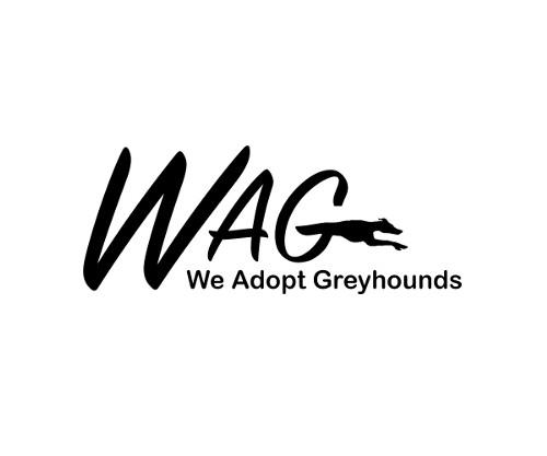 We Adopt Greyhounds