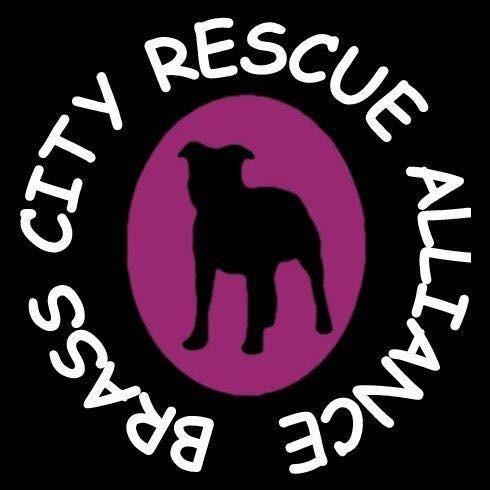 Brass City Rescue Alliance